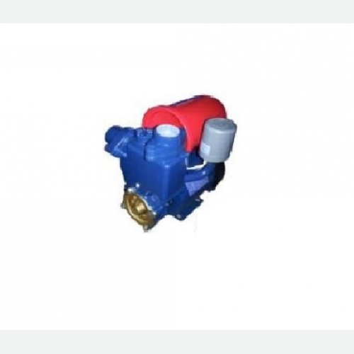 Auto Self-Priming Pump (II)