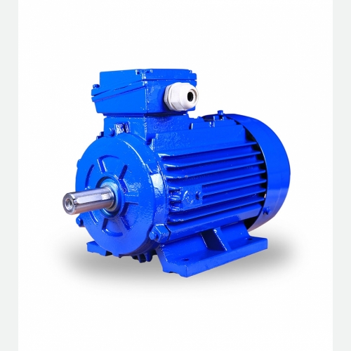 BRANCO 3 Phase Cast Iron IE2 Induction Motor