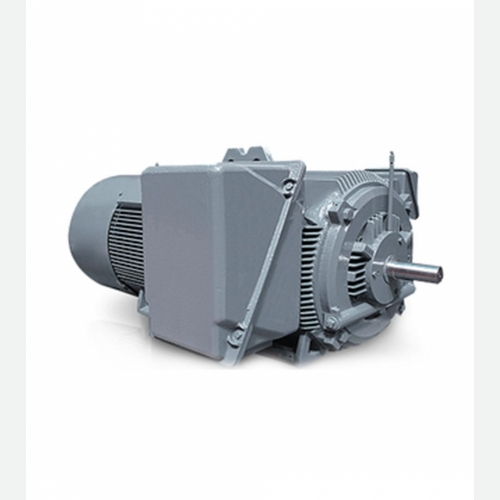 Large Low Voltage Motor