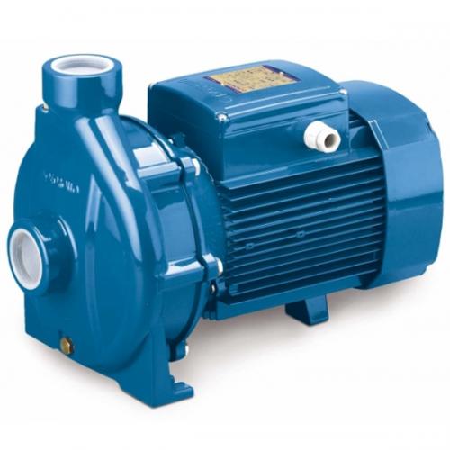 Pedrollo Centrifugal Pump 1.5kW, 50~220L/min 37~20m CP160B