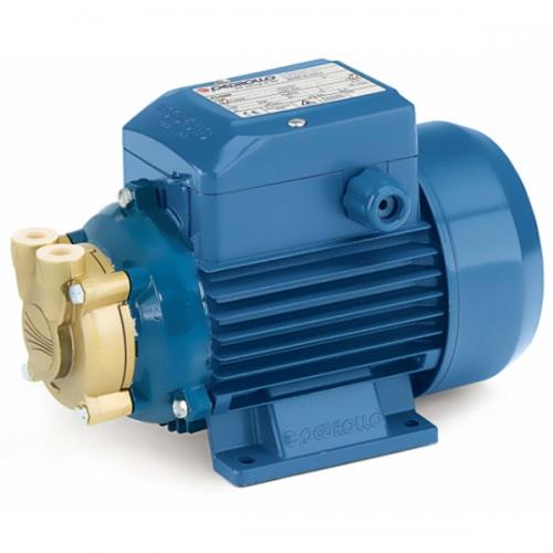 Pedrollo Peripheral Pump 0.18kW, 2~10 L/min, 35~5 meters PVm55