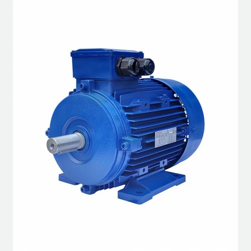 BRANCO 3 Phase Aluminium Induction Motor