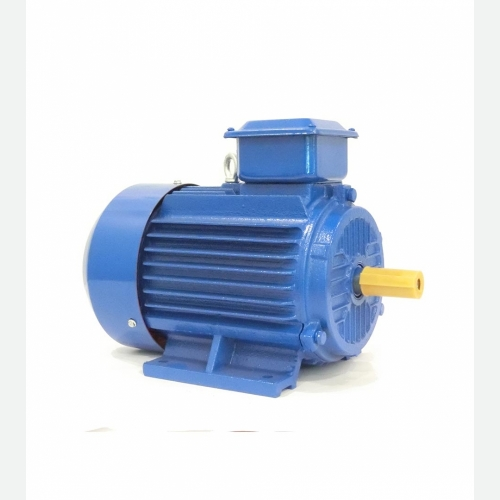 Y2 Series Three Phase Induction Motor IP55, Class F