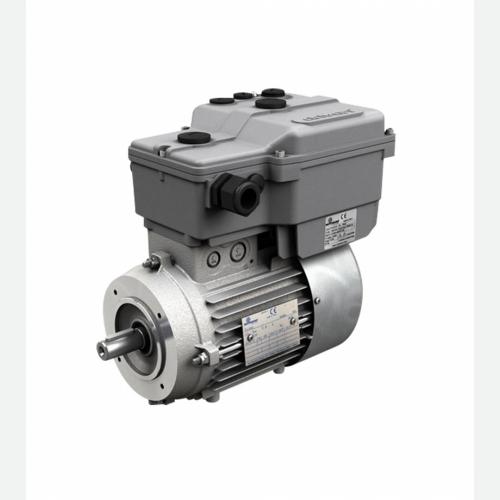Drivon Inverter Motor
